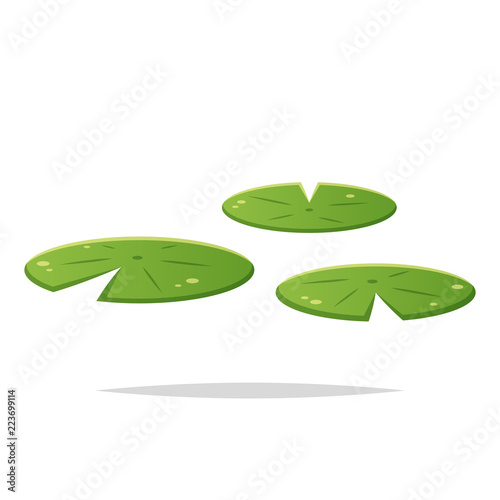 Valokuva Water lily pad vector isolated