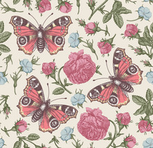 Butterflies Peacock Moths Insect Fly. Flowers Seamless Pattern Blooming Roses Agrostemma Realistic Isolated. Vintage Beautiful Background. Wildflowers Drawing Engraving Vector Victorian Illustration