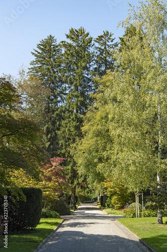 Foto op Plexiglas Begraafplaats Eingangsweg zum Friedhof Fluntern, Zürich, Schweiz