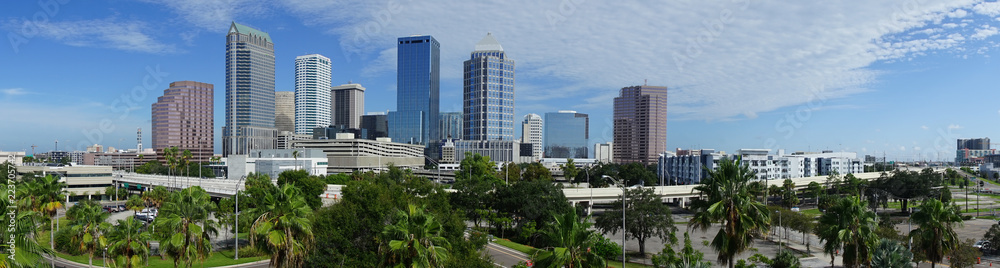 Fototapeta Urban Panoramic Downtwon City Skyline of Tampa Florida