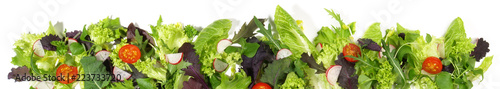 Fotografie, Obraz  Salat - Panorama