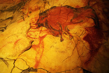 Interior Virew Of Altamira Museum Cave, Cantabria, Spain, Europe