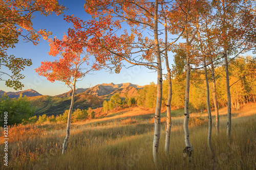 spadek-kolor-w-aspen-polany-z-wasatch-mountains-utah-usa