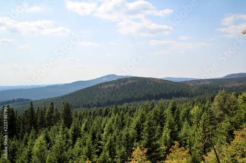 Fotografie, Obraz  Landschaft im Harz, Felsen, Bäume