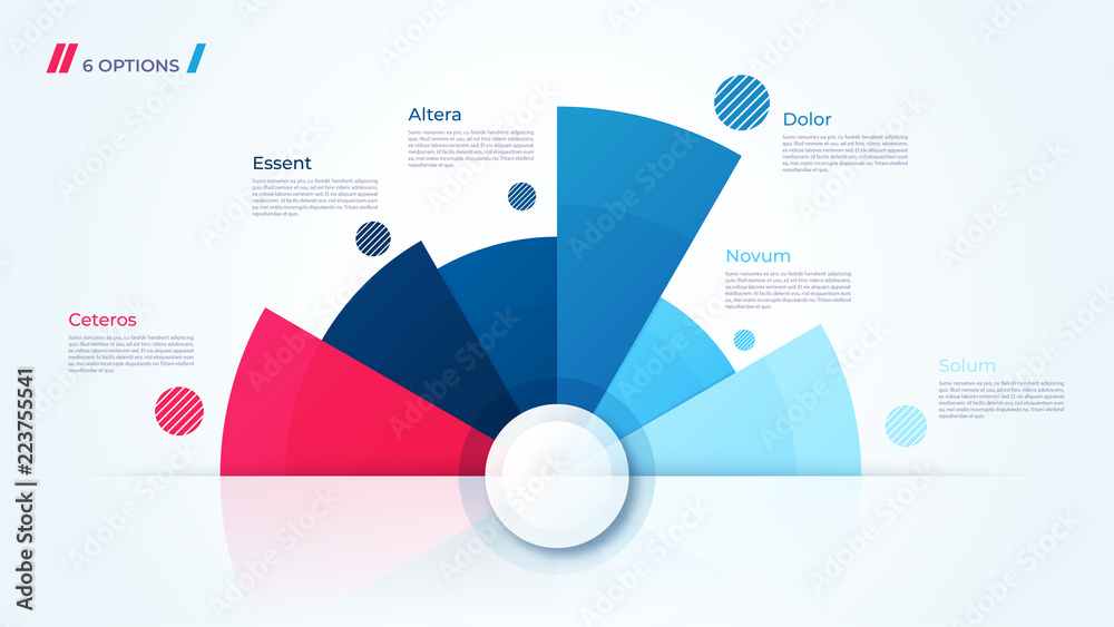 Fototapeta Vector circle chart design, template for creating infographics