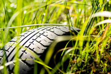 Car Tire In The Grass