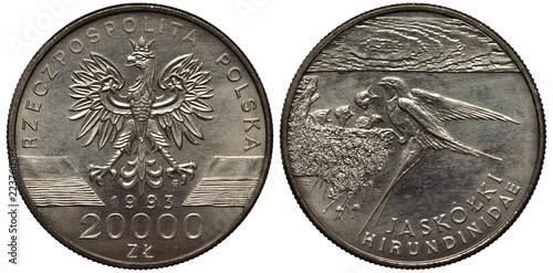 Fotografia  Poland Polish coin 20000 twenty thousand zlotych 1993, eagle, date and value fla
