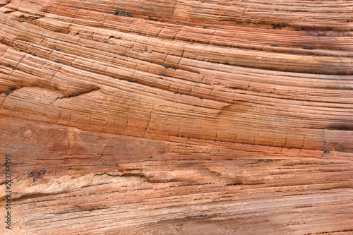 Fotografija  Navajo sandstone layers and cross beds, Zion National Park, Utah