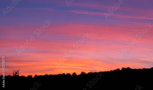 Papiers peints Corail coucher de soleil