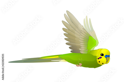 Fotografia vector cartoon animal clip art