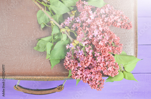 Fotobehang Lilac Bouquet of lilac on retro suitcase layout on blue wooden table. Top view, flat lay style.
