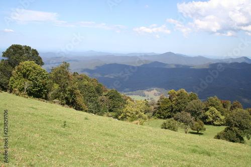 griffith lookout, dorrigo national park