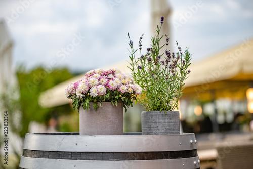 Aluminium Prints Bonsai Chrysanthemen im Topf mit blühendem Lavendel im Topf auf einem alten Weinfass