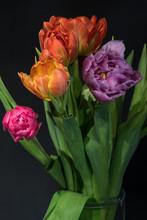 Fine Art  Floral Still Life Co...