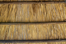 Texture Of A Wall From A Thin Reed