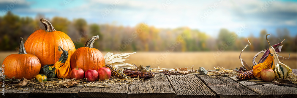 Fototapety, obrazy: Thanksgiving With Pumpkins  Apples And Corncobs On Wooden Table With Field Trees And Sky In Background