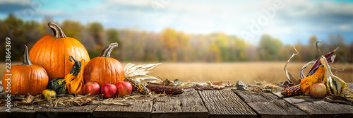 Fototapeta Thanksgiving With Pumpkins  Apples And Corncobs On Wooden Table With Field Trees And Sky In Background obraz