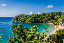 Amazing Tropical Beach In Trinidad And Tobago, Caribe - Blue Sky, Trees, Sand Beach
