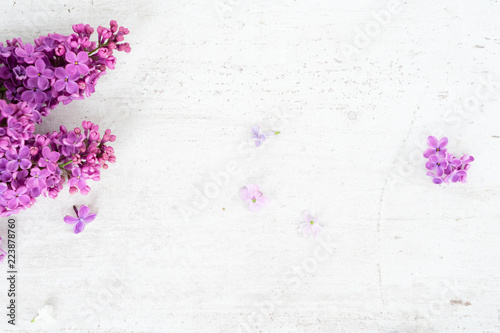 Foto op Canvas Bloemen Fresh lilac flowers frame over white wooden background with copy space, flat lay top view floral composition