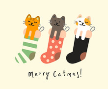Sock With Christmas Cats