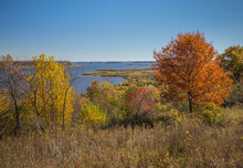 Fall Landscape With Colorful T...