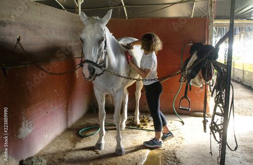 Photo  ragazzina che prepara un cavallo bianco nella stalla