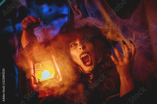 Fotografie, Obraz  Witch With Lighted Lantern In Magic Fog