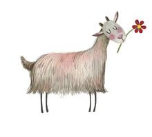 Cute Watercolor Farm Animal On...