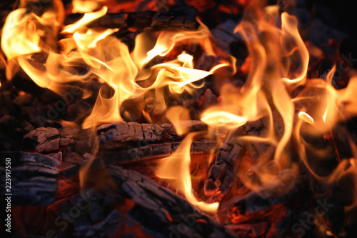 Foto op Canvas Vuur Fire flame and coal
