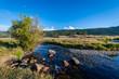 Moraine Meadow