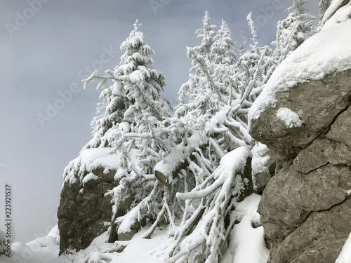 Fotografie, Obraz  Northern Velebit national park in Croatia, winter landscape