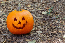A Friendly, Spooky Jack-o-lantern Pumpkin Sitting On Brown Mulch In The Front Yard.