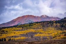Mountains With Fall Color In Colorado