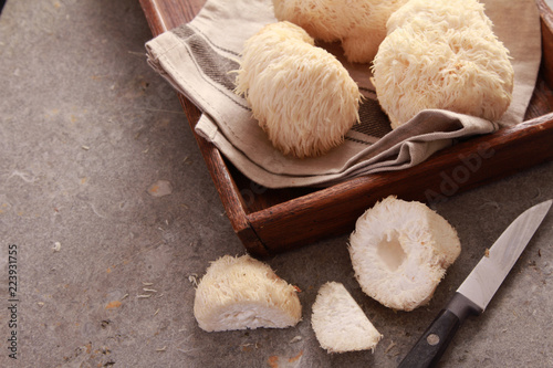 Obraz preparing fresh pompom mushrooms - fototapety do salonu