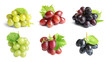 canvas print picture - Set with different ripe grapes on white background