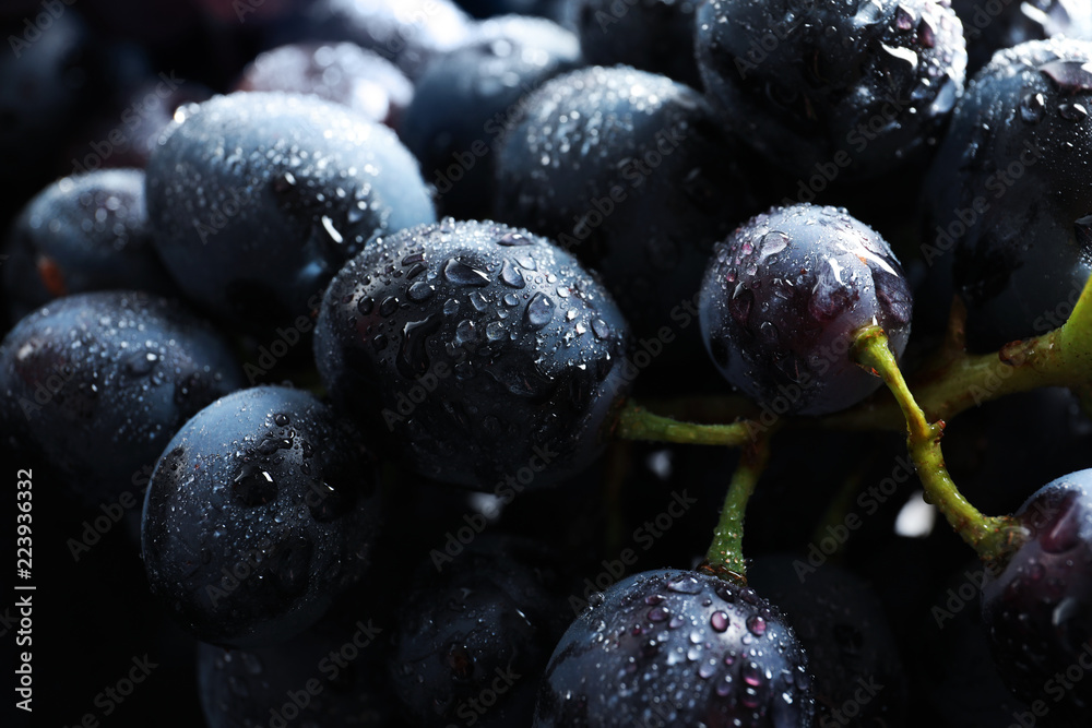 Fototapety, obrazy: Bunch of fresh ripe juicy grapes as background. Closeup view