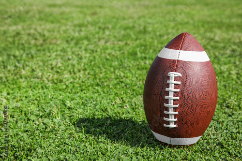 Ball for American football on fresh green field grass. Space for text