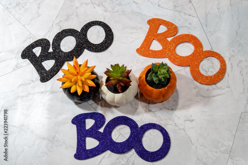 Fotografie, Obraz  Boo word for Halloween - arranged around autumn succulents cactus plants