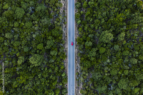 Obraz na plátne Aerial view of a red car that runs along a road flanked by a green forest