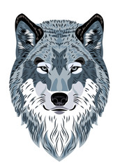 Beautiful portrait of a forest wolf