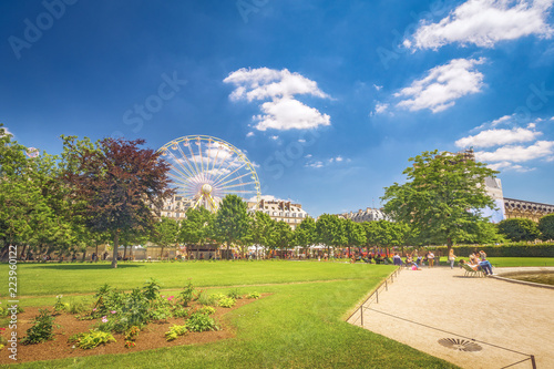 Fotobehang Parijs Tuilleries gardens in Paris with green lawns at daytime. Scenic travel background.