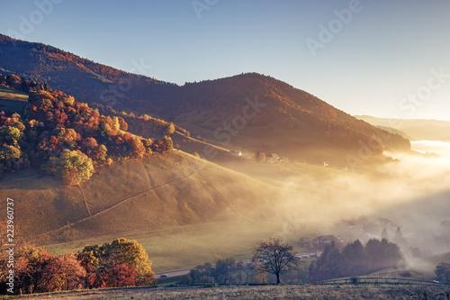 sceniczny-mglowy-gora-krajobraz-z-starym-monasterem-w-czarnym-lesie-niemcy-kolorowe-tlo-podrozy