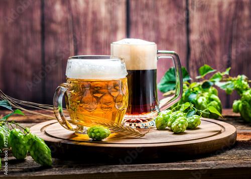 Tuinposter Bier / Cider Bier - Alkohol - Spirituosen - Getränk - Hopfen - Gerste - Stutzen- Seidel - Kanne - Glas