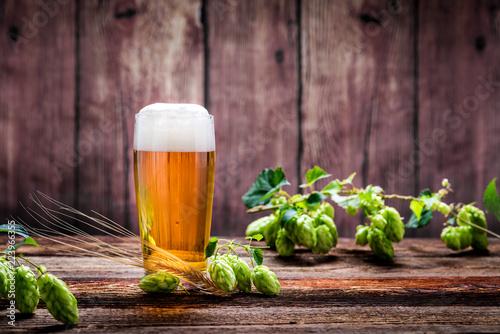 Bier - Alkohol - Spirituosen - Getränk - Hopfen - Gerste - Stutzen- Seidel - Kanne - Glas