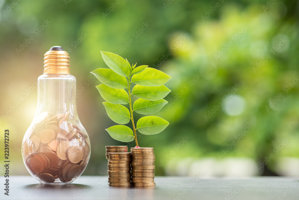 Fototapety, obrazy: Energy saving. stacks of coins growing in light bulb and tree growing on stacks of coins and tree nature background. Saving, Natural energy and financial concept.