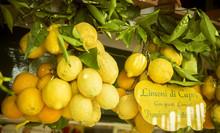 Lemons On Capri Island