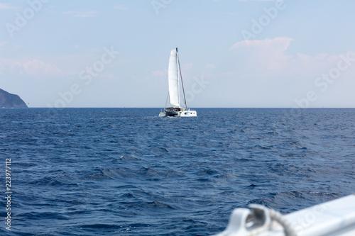 Deurstickers Zeilen catamaran sailing along coast