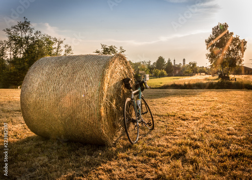 Fotografie, Obraz  Bicycle in the countryside of Italy cycling at sunset