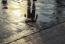 Silhouette Of A Person Reflecting In A Puddle After The Rain.