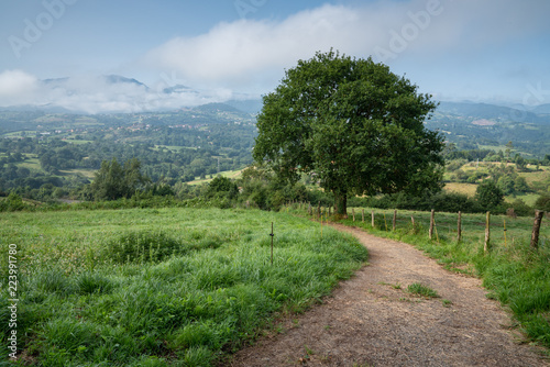 Beautiful landscape along the Camino de Santiago trail between Oviedo and Grado, Asturias, Spain
